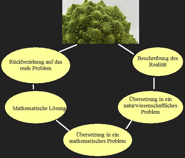 Mathematik Sprache Der Natur